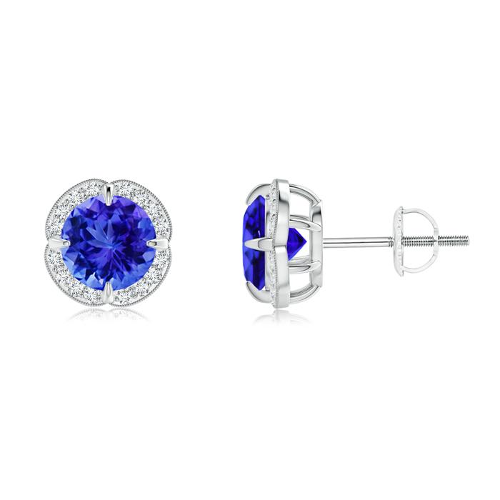 Claw-Set Tanzanite and Diamond Halo Studs - Angara.com